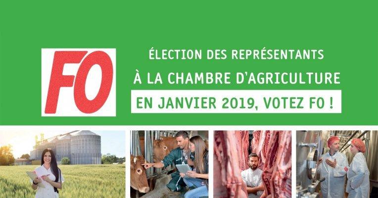 Election des repr sentants la chambre d 39 agriculture il - Chambre d agriculture 22 ...